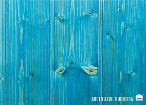 A-abeto-azul-turquesa